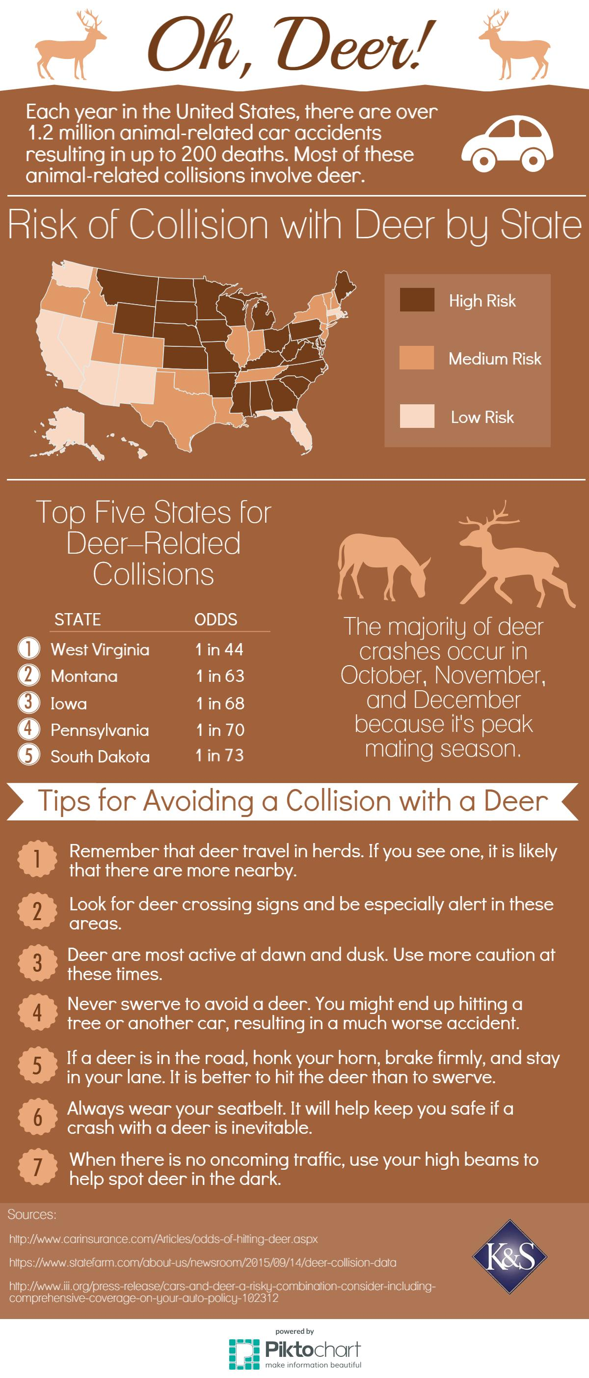 Deer-Accidents-Infographic
